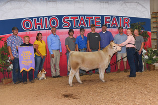 Taylor Barton, Reserve Grand Champion Steer, Ohio State Fair