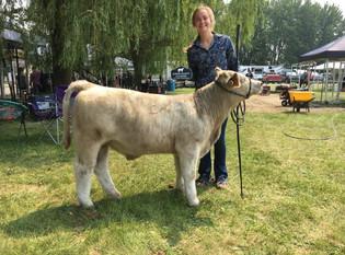 Grace Shupe, Grand Champion Lightweight Calf, Huron Community Fair 2021