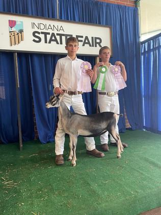 Elijah Weible, Reserve Grand Champion Goat, Indiana State Fair