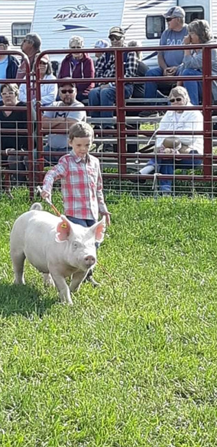 Ryan Silta, Reserve Grand Champion Hog, Alger County Fair