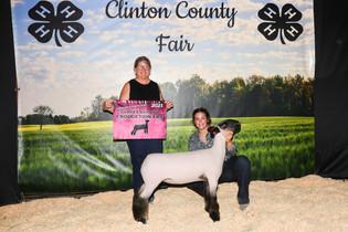 FOC_Maggie Mathews_GC Sheep_Clinton County Fair .jpeg
