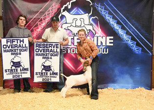FOC_Nevaeh Powers_5th Overall Market Goat_State Line Livestock Show.jpg