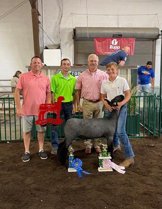 Maguire Willson, Reserve Grand Champion Lamb, Fulton County Fair 2021