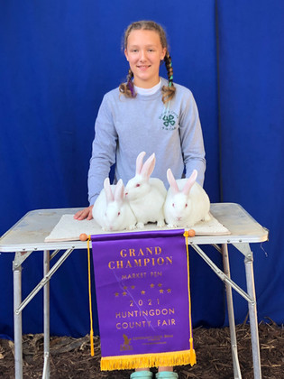 Marissa Yutzy, Grand Champion Rabbit, Huntingdon County Fair