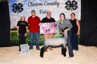 FOC_Maggie Mathews_RGC Lamb_Clinton County Fair.jpeg