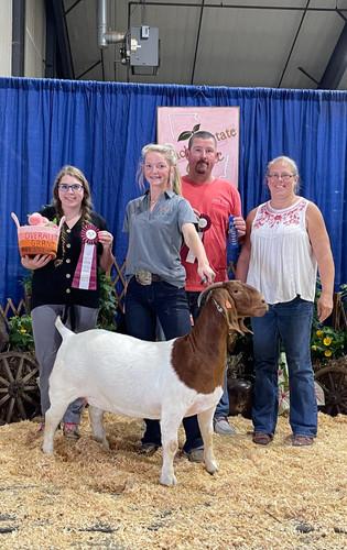 Cameron White, Grand Champion Goat, Peach State Classic