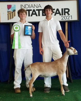 Josh Thompson, Grand Champion Goat, Indiana State Fair