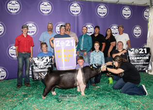 Wyatt Wood, Grand Champion Hog, Michigan Livestock Expo