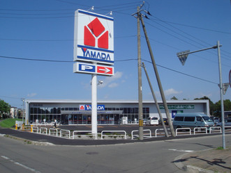 ヤマダ電機「テックランド北広島店」