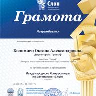 chapter_coord_Kolomiets_Oksana_Aleksandr