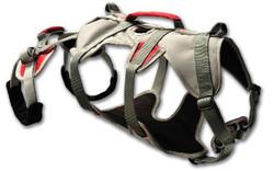 doubleback-harness (1)
