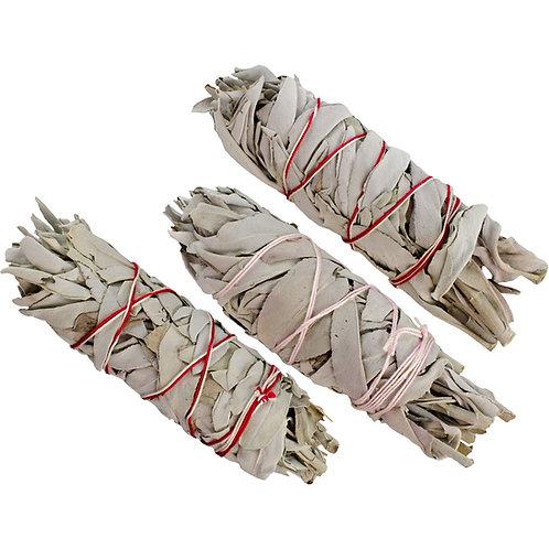 "Sage Stick- Small 5-6"""