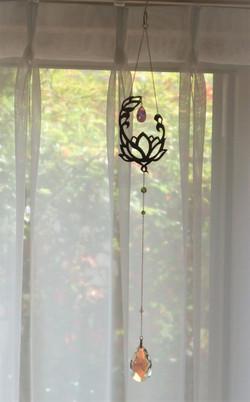 蓮の花 lotus flower