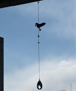 シアワセのとり bird carrying happiness
