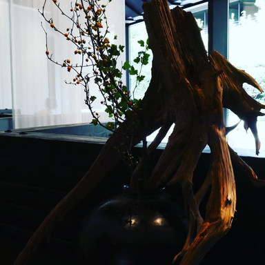 weight of branch