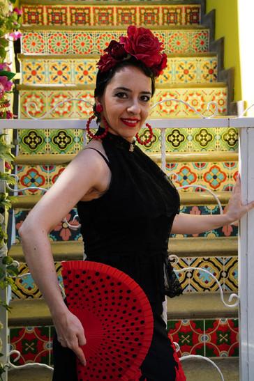 flamenko dans melis