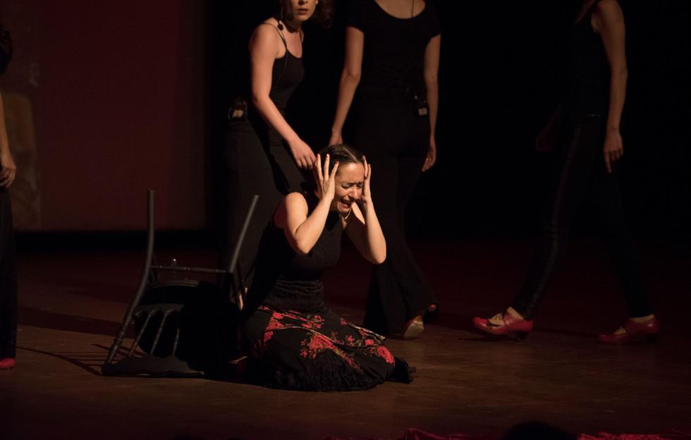frida flamenko