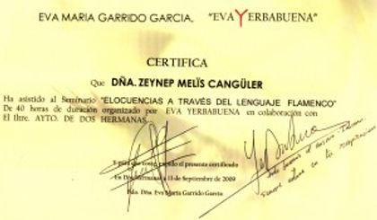 melis cangüler azulmavi flamenko