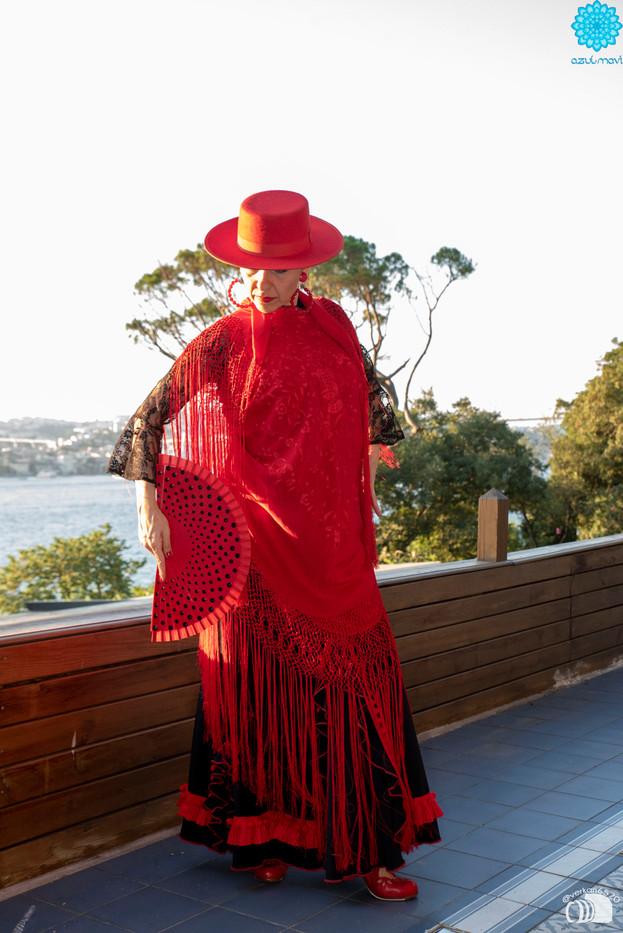 flamenko dans me