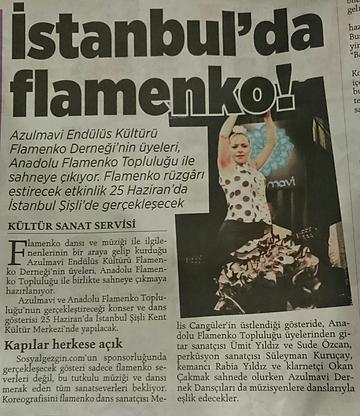 azulmavi flamenko kursu