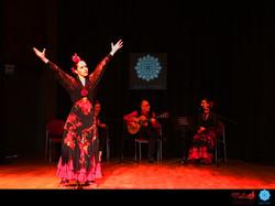 Melis Cangüler Azulmavi Flamenko Aka