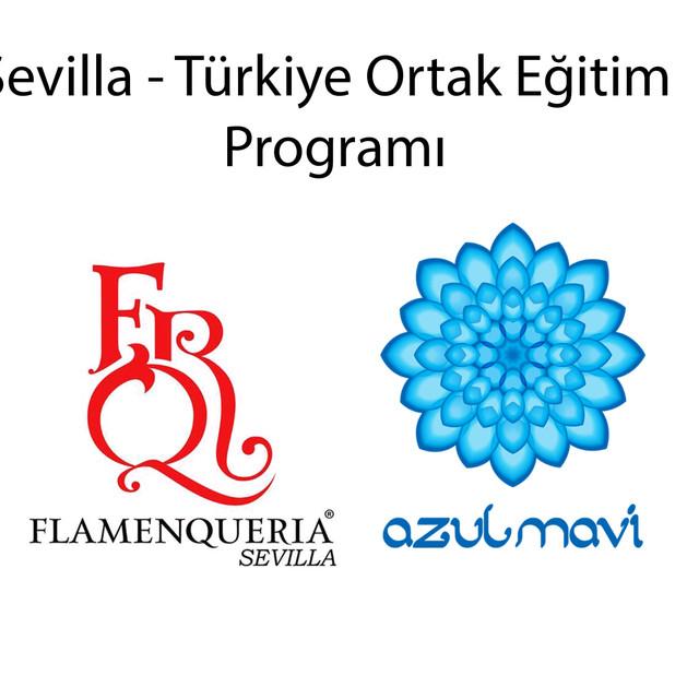 Sevilla-Türkiye Ortak Program Flamenko workshop