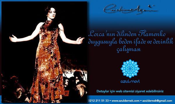 azem flamenco workshop