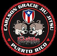 Bjj Kids Luis logo copy.png