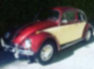 Escarabajo sin matricula.JPG