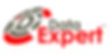DataExpertLogo-google.png