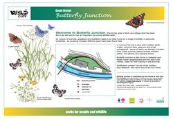 IB1- Butterfly Junction