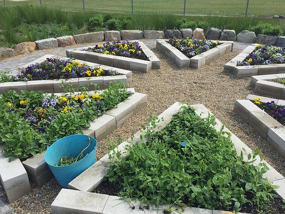 Guiteras Elementary School Discovery Garden, Bristol, RI
