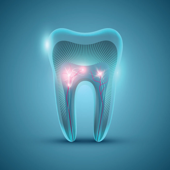 What-Is-a-Root-Canal-1024x1024.jpg