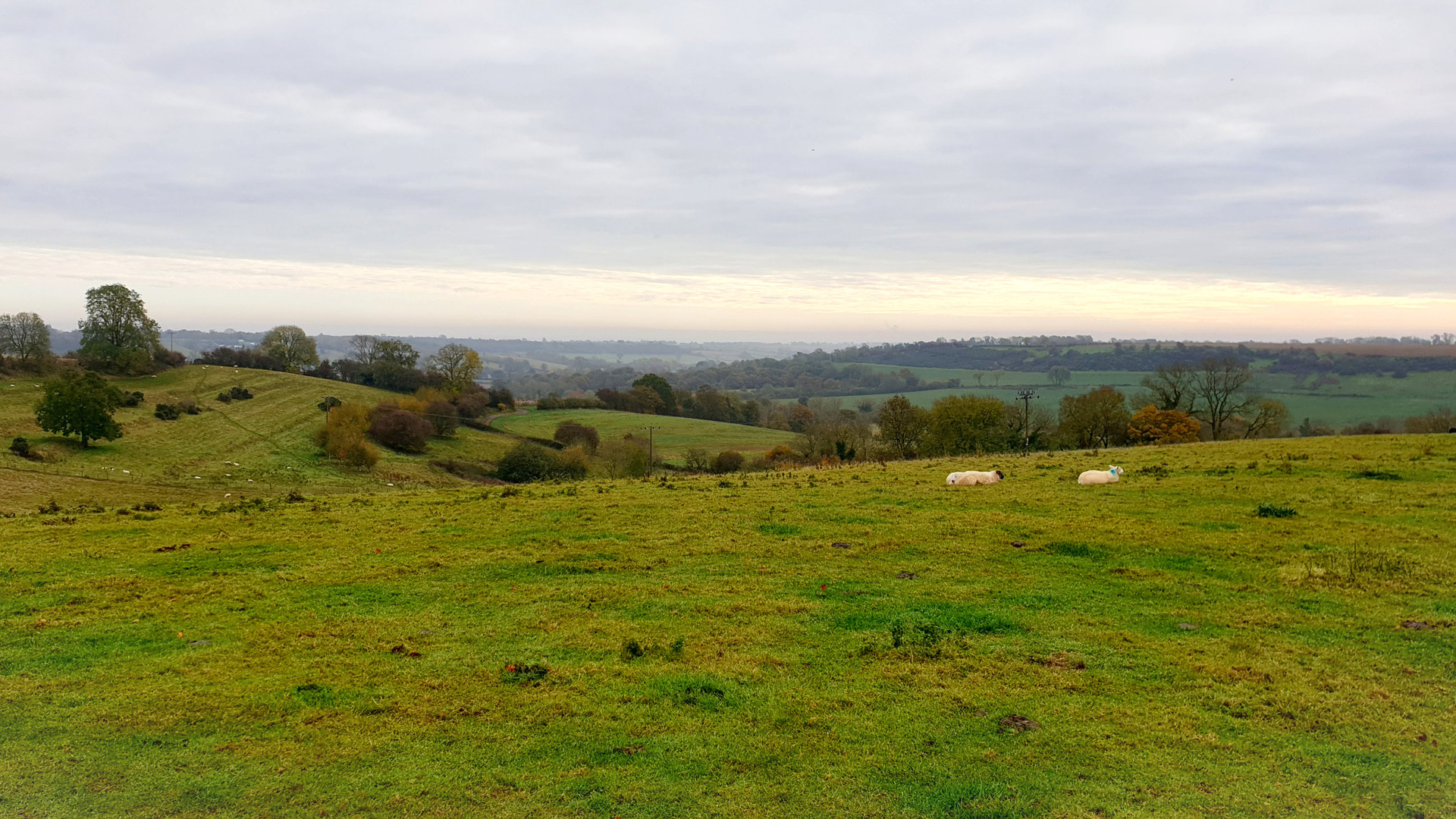 Guided tours in the Cotswolds