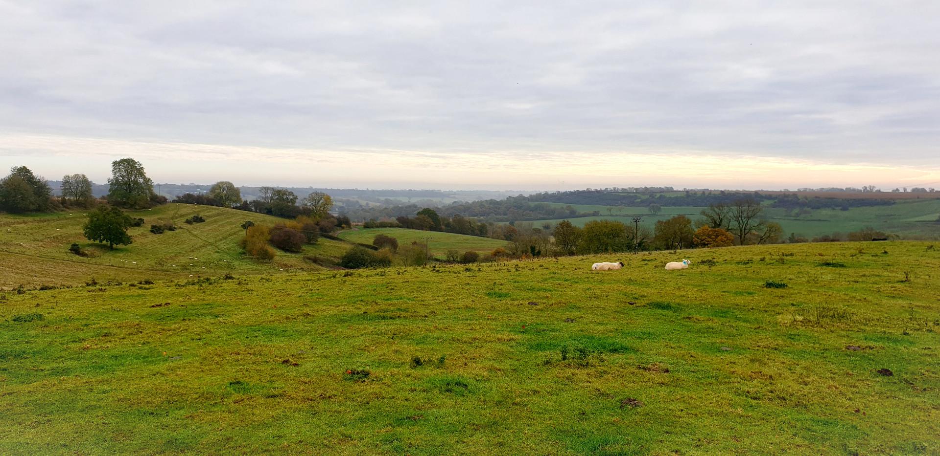 Cotswoldhills.jpg