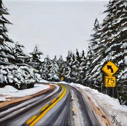 Snowy Turvy