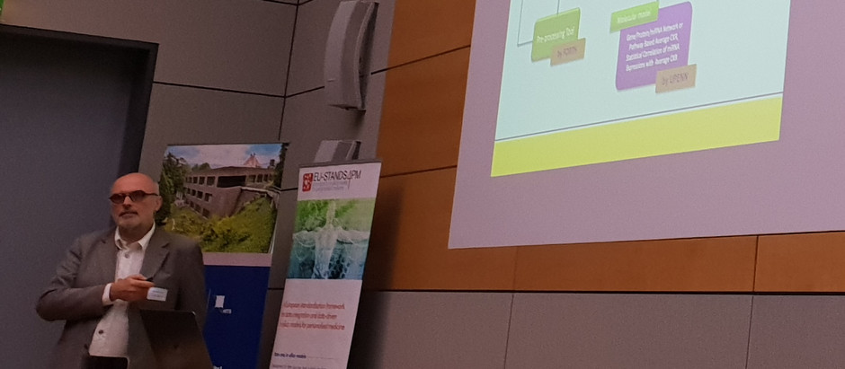 The WT Oncosimulator presented at the Heidelberg conference on Computational Modeling in Biology