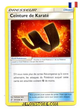 CEINTURE DE KARATE 201/236 FR SL11 HARMONIE DES ESPRITS
