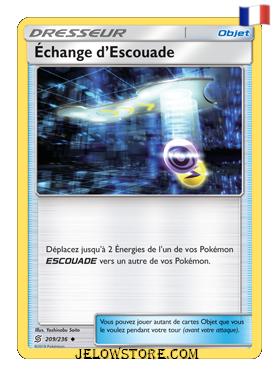 ECHANGE D'ESCOUADE 209/236 FR SL11 HARMONIE DES ESPRITS