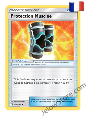 PROTECTION MUSCLEE 136/181 FR [SL9 DUO DE CHOC]
