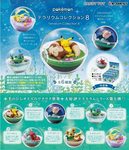 pokemon rement terrarium collection 8