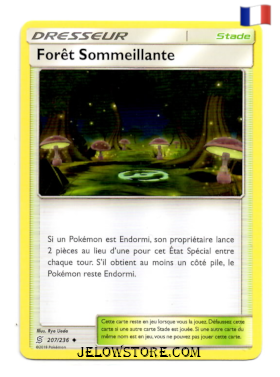 FORET SOMMEILLANTE 207/236 FR SL11 HARMONIE DES ESPRITS