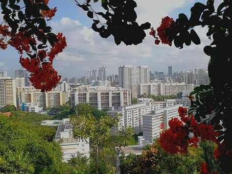 4 Factors To Consider When Deciding Whether To Keep Your Older HDB Resale Flat