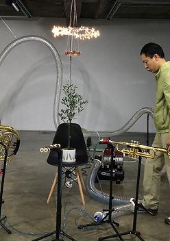 trumpet still 2.jpg