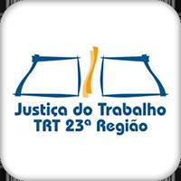 trt(1).png