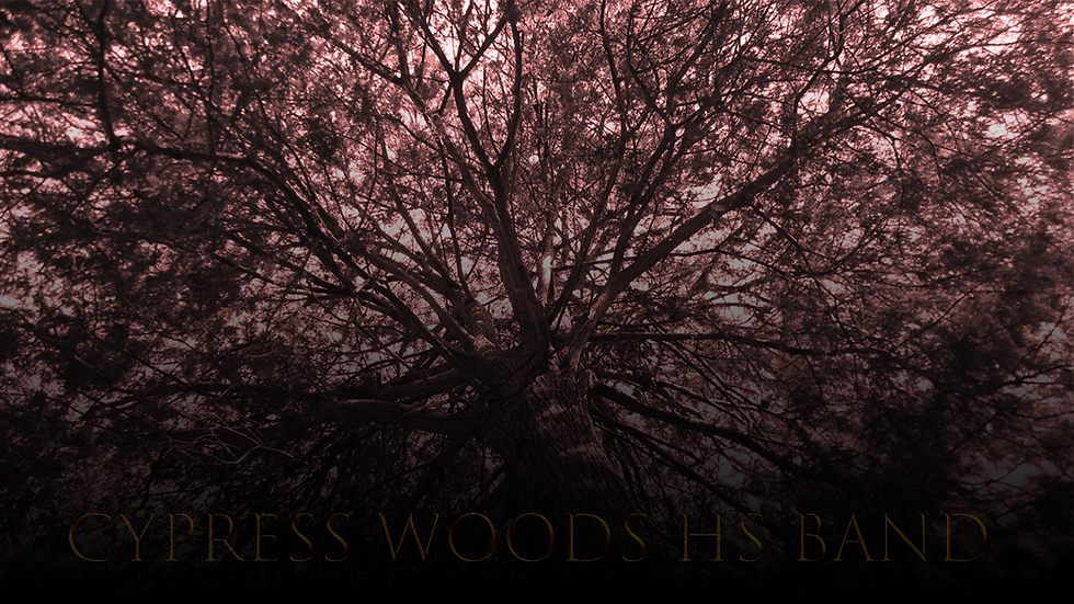 WoodsWebsite.png