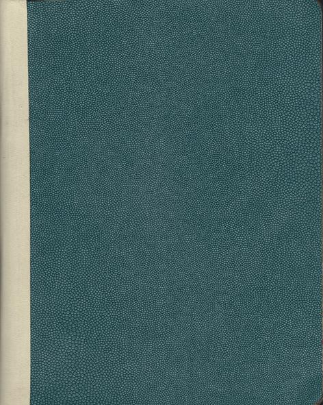 portada verde 1