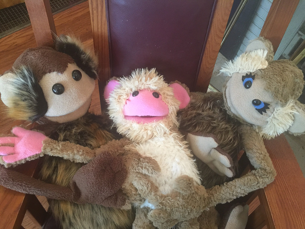 """These guys will be starring in """"Monkey See, Monkey Do"""" May 12 & 13"""