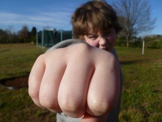 La agresividad en la infancia y la adolescencia