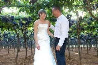 Newly weds in vineyard